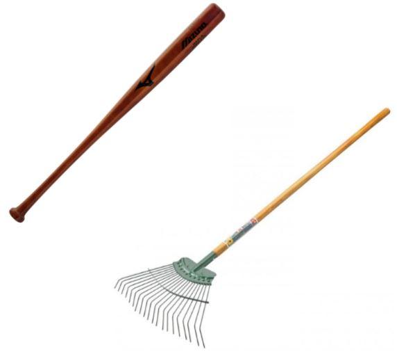bat and rake